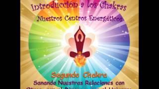 Chakra 2-5- Sanando Nuestras Relaciones con Nosotros Mismos y con Todo