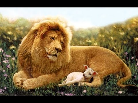 Mandela Effect 100 Proof It Was The Lion And The Lamb
