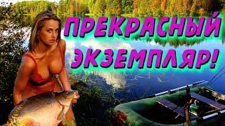Девушки на рыбалке Приколы на рыбалке Зимняя рыбалка Случаи на рыбалке Женская рыбалка