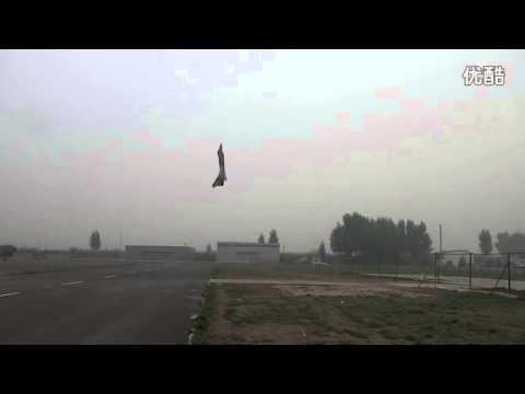Chinese RC F-10 Vertical takeoff