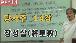 [현단명리] 당사주 14강 장성살(將星殺)