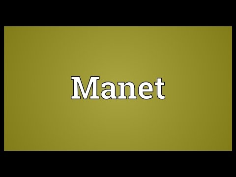 Manet Meaning