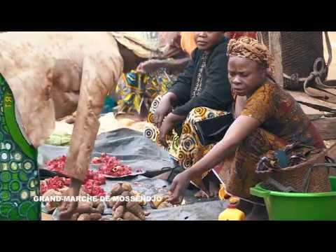 Grand Marché de Mossendjo. République du Congo – Afrique Centrale