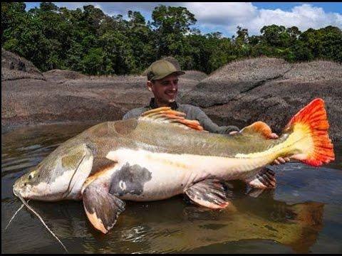 Atractivos turisticos de Iquitos Peru - Loreto Amazonas 22