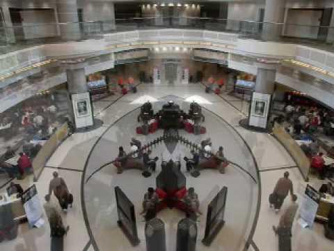 Steve Tanner - Atrium Exhibit - Hartsfield-Jackson Atlanta International Airport
