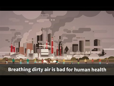 Air pollution a major cause of infant deaths in Sub-Saharan Africa