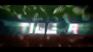 Intro // TigerGFX [V2]