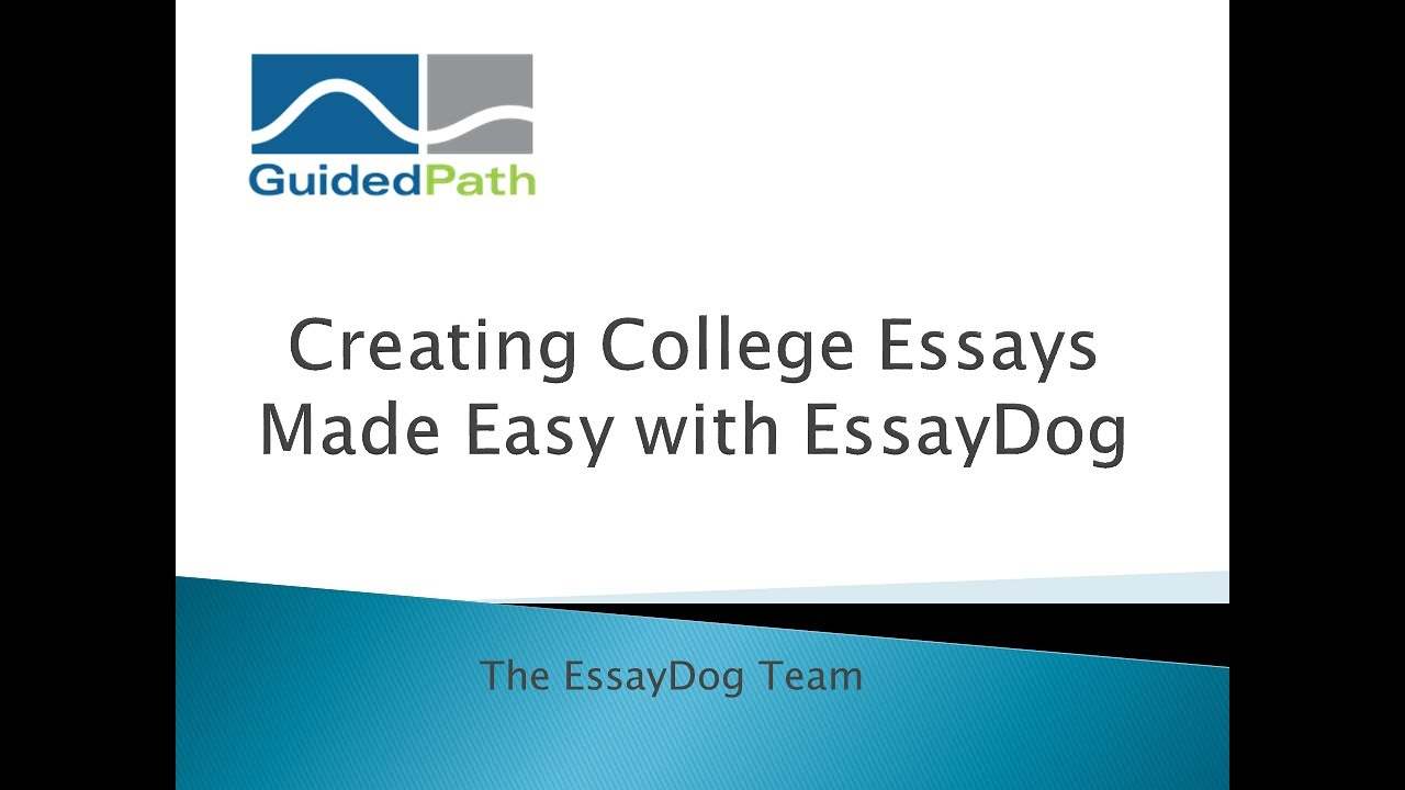 essay writing made easy book Persuasive Essay Writing Made Easy