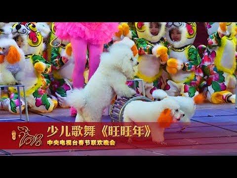 [2018央视春晚]少儿歌舞《旺旺年》 表演:空军蓝天幼儿艺术团   CCTV春晚