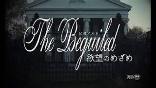 「The Beguiled/ビガイルド 欲望のめざめ」の関連ニュースはこちら。 ht...