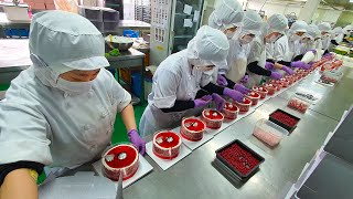 Amazing mass production! Cake Factory Manufacturing Video BEST6 / Korean Food