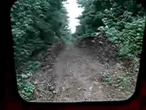 Thumbnail: Train hits tree.avi
