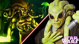 10 Interesting Facts About KIT FISTO - Star Wars Explained