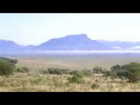 Evolution Permian-Triassic Extinction