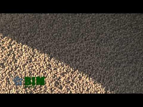 Quy trình sản xuất tôm khép kín của BIM FOODS