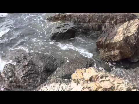 Meadfoot Beach -Torquay