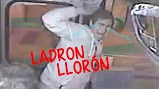 Ladrones estupidos top 10 - Ladrón troleado
