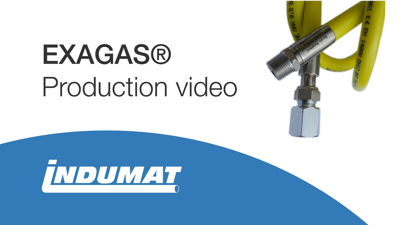 Exagas Stainless Steel Hose For Natural Gas Propane Gas Butane Gas