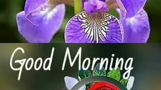 Assamese WhatsApp status Good morning