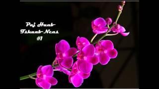 Paj Huab   Tshuab Ncas #1