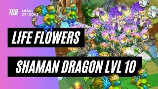 Merge Dragons Life Flowers • Shaman Dragon Level 10 ☆☆☆