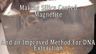An Improved Method for DNA Extraction: Silica Coated Magnetite