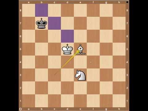 Chess Endgames- Bishop and Knight Part 1