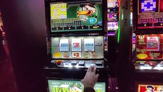 Choctaw Broken Bow 2 Polar High Roller 2 Lucky Ducky Happy New Year