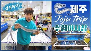 [제주 여행] 저렴한 가격의 싱싱한 해산물을 구매할 수…