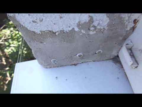 Дерьмо и голуби! Найдена защита от голубей на подоконнике