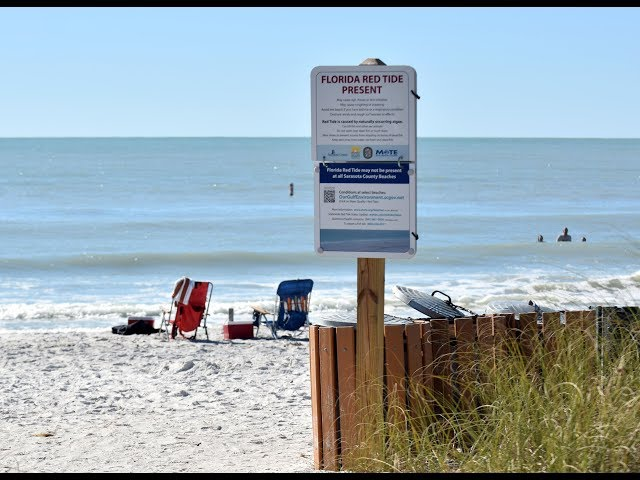 Map Of Florida West Coast Beaches.Red Tide Sullied Shorelines And Business In Sarasota Manatee