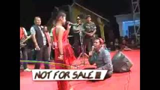 Download Video 'ANTARA SENYUM DAN PERANG' Tasya feat Broden - NEW PALLAPA_low.mp4 MP3 3GP MP4