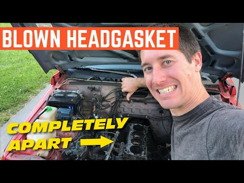 $400 Geo Tracker NIGHTMARE Engine *Is It Worth Fixing?*