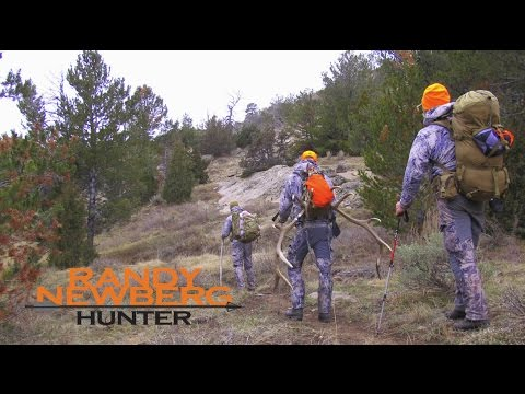 Elk Hunting Field Care of Meat - The Gutless Method (field d