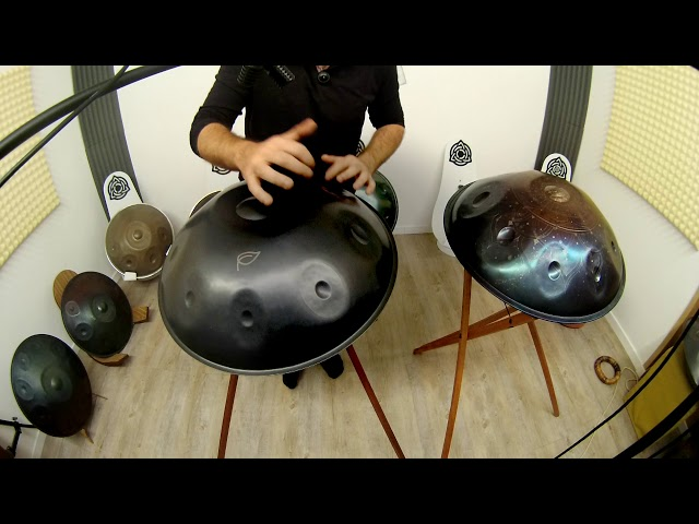 Leaf Sound Sculpture- Arboreal (Eb) Bb B Db Eb Gb Bb B Eb HardcaseTechnologies Handpan Review