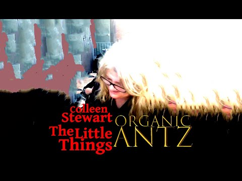 The Little Things - Organic Antz