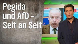 Pegida und AfD – Seit an Seit