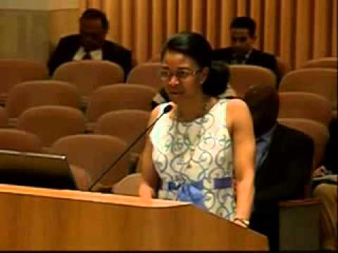 Cynthia Harris Speaks About Saving Tinker Field  Public Comments  City of Orlando 81114