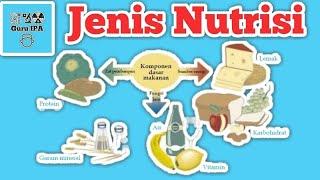 Nutrisi Yang Dibutuhkan Oleh Tubuh : Sistem Pencernaan Manusia