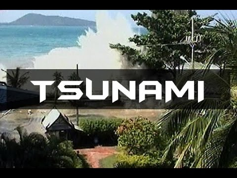 Megadisaster 2004 Indian Ocean Tsunami: Deadliest Earthquake and Tsunami of Modern History