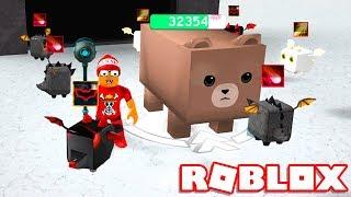 DEFEATED PANDA and BEAR in ROBLOX DRAGON SIMULATOR → Dragon Simulator 🎮