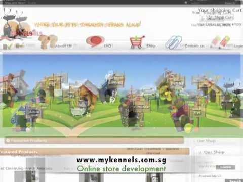 Shin Concept Web Development Intro Video
