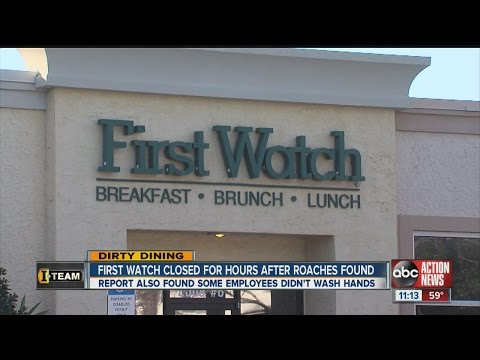 Dirty Dining: First Watch Restaurant