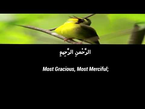 surah-alfatiha:the-meaning-and-translation-with-beautiful-voice