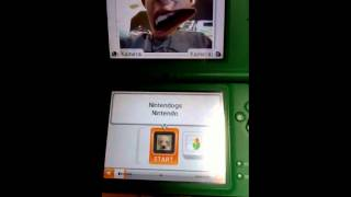 Nintendogs How to delete data