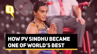 PV Sindhu's Meteoric Rise in World Badminton