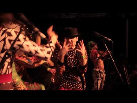 Sam And The Womp - School of Womp (Live)