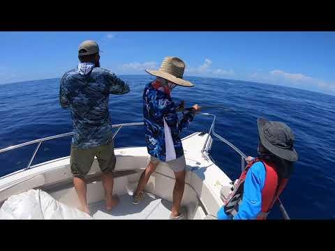 Florida Keys Offshore Mahi And BLACK FIN TUNA Fishing***So Much Fish!!