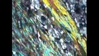 Biotite muscovite schist (XP)