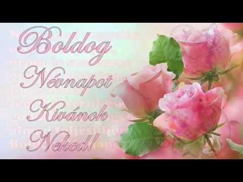 boldog névnapot kívánok neked Boldog Nevnapot Kivanok Neked kedves Hanna :  Maria Low Jensen  boldog névnapot kívánok neked
